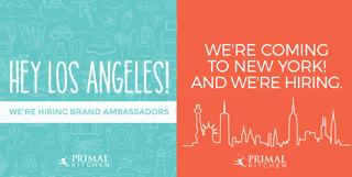 Brand Ambassador NY and LA
