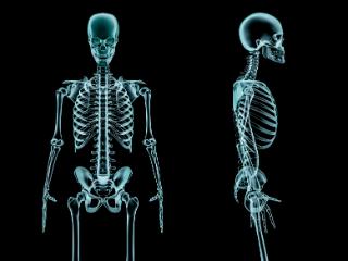 Bones Final